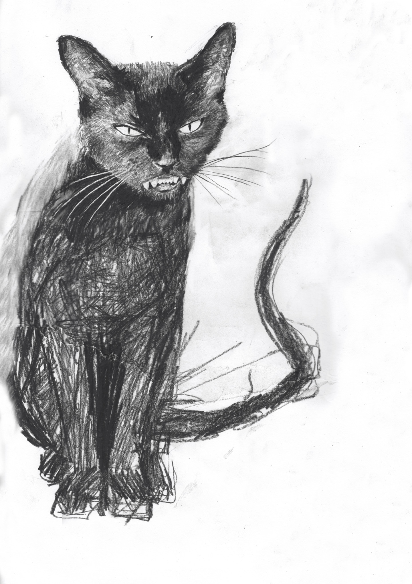 Fleur Elise Noble - Black Cat