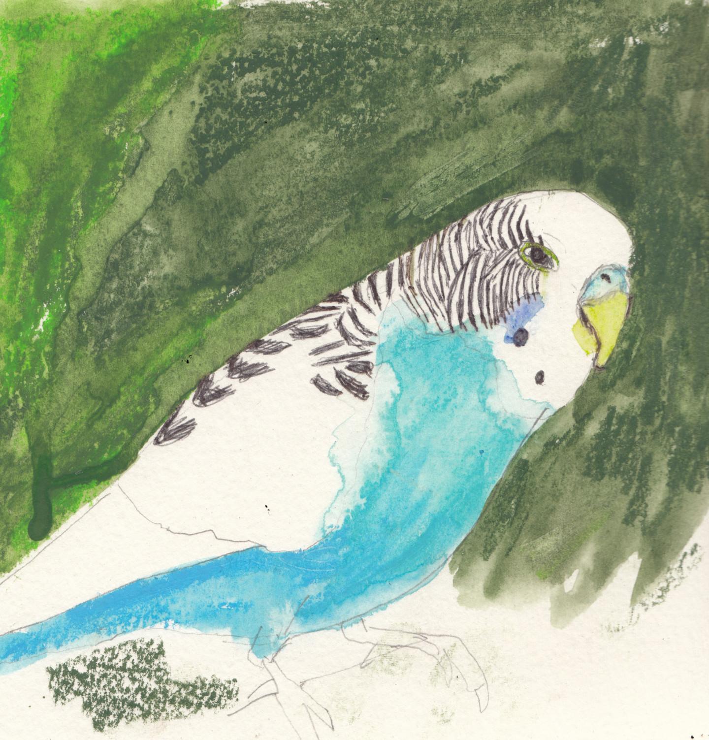 Fleur Elise Noble - Bird