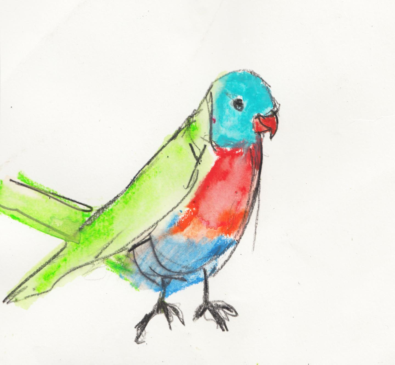 Fleur Elise Noble - Bird of Colour