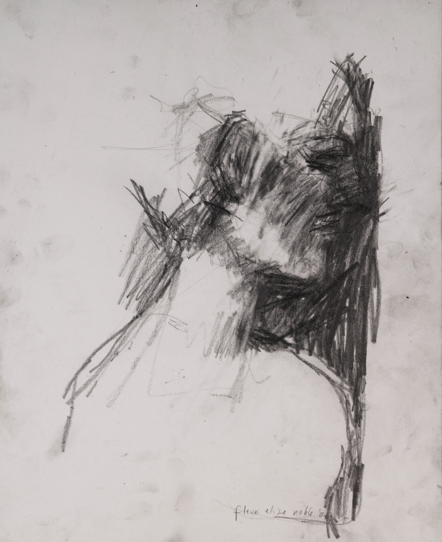 Fleur Elise Noble - Dirty Portrait 9