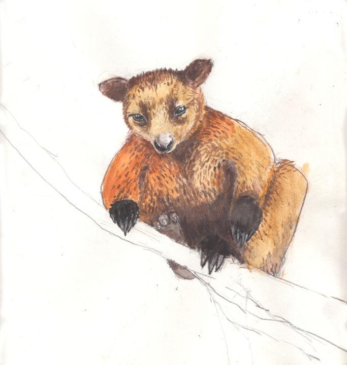 Fleur Elise Noble - Tree Kangaroo